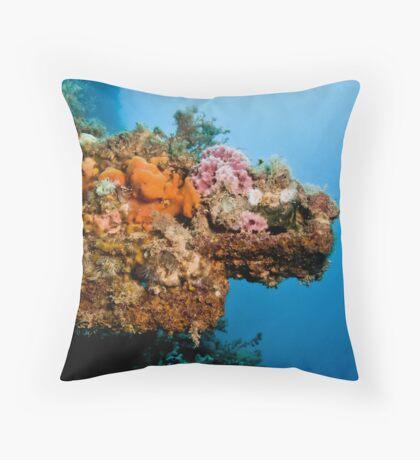 Coral Ship Throw Pillow