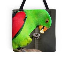 Got to love peanuts! - Red-Winged Parrot - NZ - Gore Tote Bag