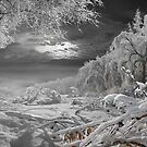 Kingdom Of Snow by Igor Zenin