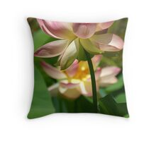 Sacred contemplation Throw Pillow