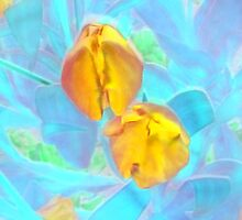 Yet to Open Yellow Tulip Duo by Mike Solomonson