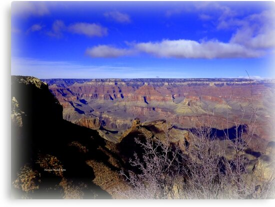 The Magnificent Grand Canyon by Charmiene Maxwell-Batten
