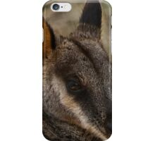 Rock Wallaby 2 iPhone Case/Skin