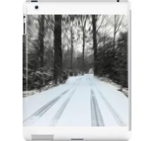 Lonely Cold Road  iPad Case/Skin