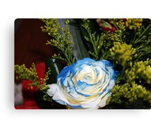 The bluish-white rose Canvas Print