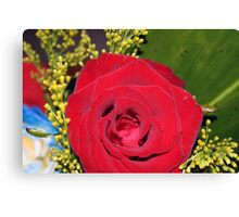 The Red Rose Canvas Print