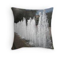 DC Fountain Throw Pillow