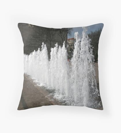 DC Fountain Throw Pillow