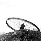 41 - DISCARDED - DAVE EDWARDS - c.1971 by BLYTHPHOTO