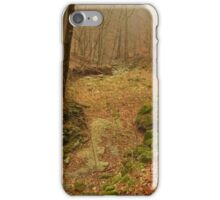 Autumn Creek Bed iPhone Case/Skin