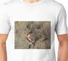 Brown Falcon - Alice Springs Desert Park - Alice Springs Unisex T-Shirt