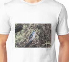 Barn Owl - Alice Springs Desert Park - Alice Springs Unisex T-Shirt