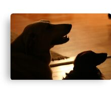 This is Jake and Aldo Canvas Print