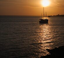 Sunset - Darwin Harbour - Northern Territory by David Blackwell