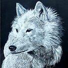 Arctic Wolf by Alexart
