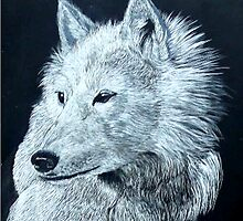 Arctic Wolf by Alexart