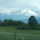 Pikes Peak by Lori Durocher