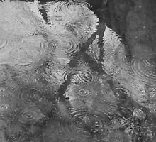 rain circles by chrisdade