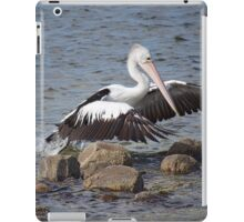 Rock Hopper iPad Case/Skin