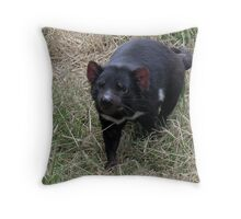 photoj Tas, Wingsfarm Park, Tassie Devil Throw Pillow