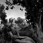 Sedona in Black & White by Daniel J. McCauley IV