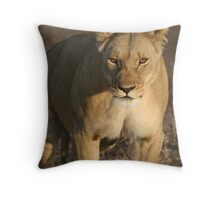 afternoon stroll. Throw Pillow