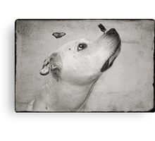 Remembering Butch Canvas Print