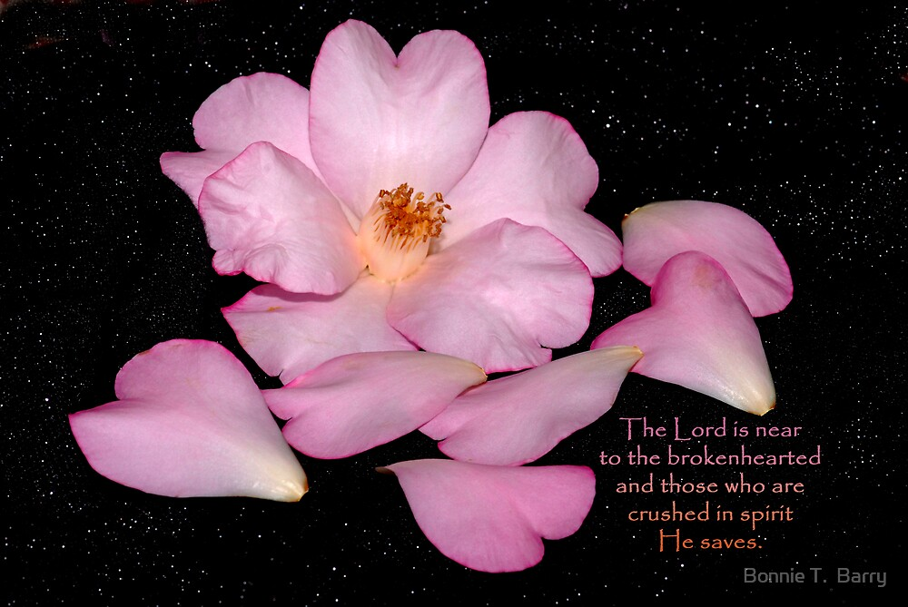 The Lord is near to the brokenhearted . . . by Bonnie T.  Barry
