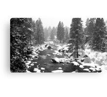 Blanket of snow Canvas Print