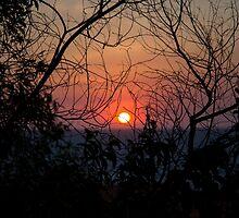 Sunset  by Daisy Van Ross