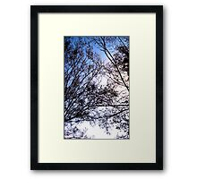 Tree Friends Touch Framed Print