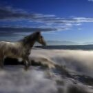 Dream-Mare by Gene Praag