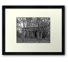 Back to the Woods Framed Print