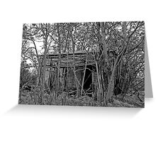 Back to the Woods Greeting Card