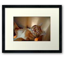 0181 - HDR Panorama - Tomcat 2 Framed Print