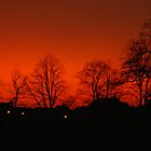 Sunrise and Sunsets  by Irene  Burdell
