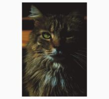 0185 - HDR Panorama - Tomcat One Piece - Short Sleeve