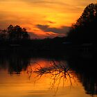 A Sunset at Clemson IV by Manas Karekar