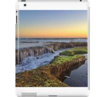 Cascades iPad Case/Skin