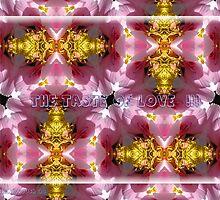The Taste of Love - Kutch Mutch by Nira Dabush