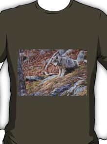 Timber Wolf sitting on Rocks T-Shirt