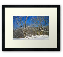 Blue Sky Winter Scene Framed Print
