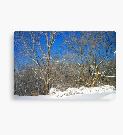 Blue Sky Winter Scene Canvas Print