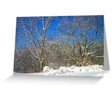 Blue Sky Winter Scene Greeting Card