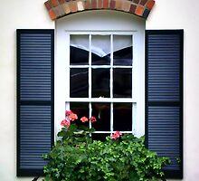 Picture Window by Davis