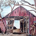 Old Red Shed by Carolyn Bishop