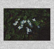 0334 - HDR Panorama - Ground Blooms Kids Tee