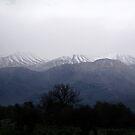 Winter in Crete  by emele