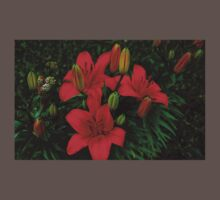 0375 - HDR Panorama - Lillies Baby Tee