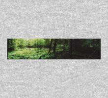 0395 - HDR Panorama - Woods Opening Baby Tee